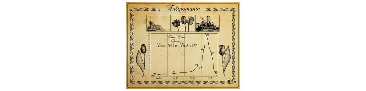 Bitcoin/Tulip-o-mania. History repeats…